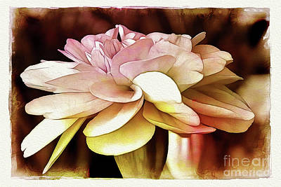 Photograph - Gentle On My Mind by Judi Bagwell