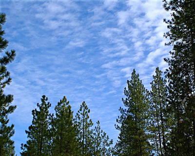 Photograph - Gentle Sky by Ben Upham III