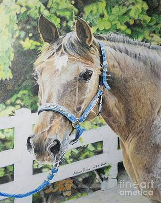 Tennessee Walker Drawing - Gentle Soul by Adrienne Deines