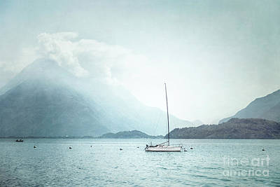 Photograph - Gentle Spirit by Evelina Kremsdorf