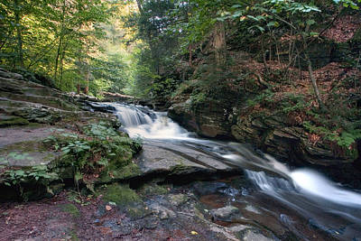 Photograph - Gentle Summer Flow Over Conestoga Falls by Gene Walls
