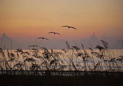 Gentle Sunrise Original