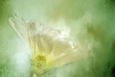 Gentle Wind Art Print