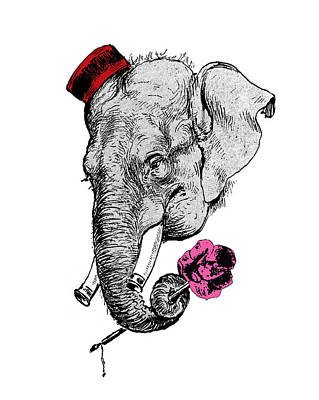 Canine Digital Art - Gentleman Elephant With Pink Rose by Madame Memento