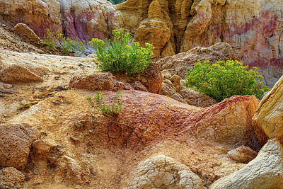 Photograph - Geological Playground by James BO Insogna