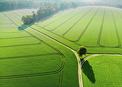 Photograph - Geometric Landscape 04 Green Fields Aerial View by Matthias Hauser