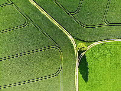 Art Print featuring the photograph Geometric Landscape 05 Tree And Green Fields Aerial View by Matthias Hauser