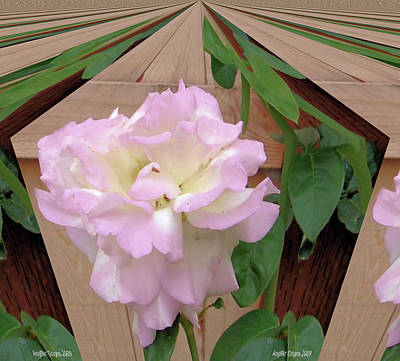 Photograph - Geometric Rose by Angie Baker