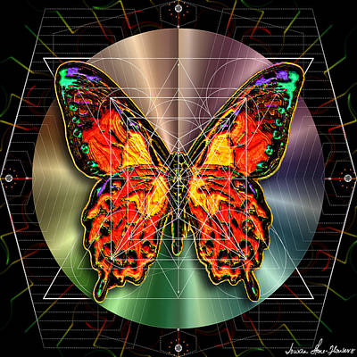 Digital Art - Geometron Fyr Lepidoptera by Iowan Stone-Flowers