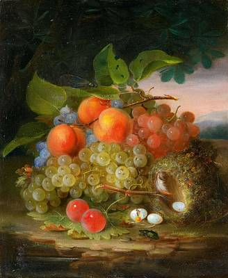 Katharine Hepburn - George Forster  Still Life with Fruit and a Birds Nest by George Forster