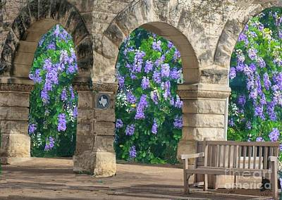 Digital Art - Wisteria In Georgetown, Texas  by Janette Boyd