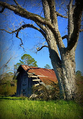 Photograph - Georgia Barn by Carla Parris