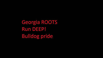 Photograph - Georgia Roots by Aaron Martens