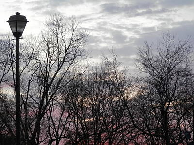 Photograph - Georgia Suburbs Morning Sky by Belinda Lee