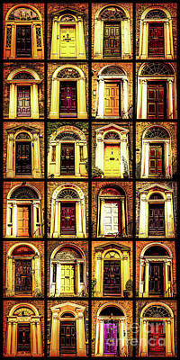 Georgian Doors Of Dublin 4 Art Print
