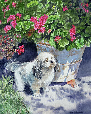 Watercolor Pet Portraits Painting - Georgie by Irina Sztukowski