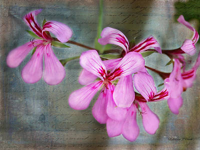 Stamen Mixed Media - Geranium by Bellesouth Studio