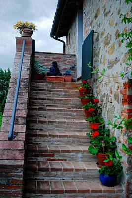 Photograph - Geranium Steps To Buddha by Dorothy Berry-Lound