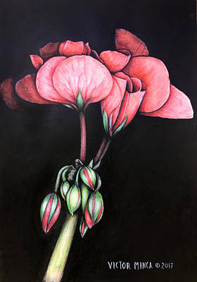 Painting - Geranium by Victor Minca