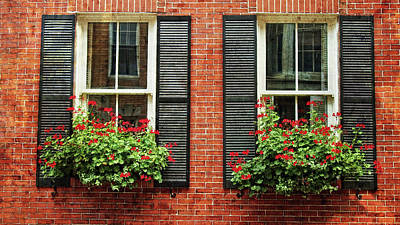 Photograph - Geranium Window Boxes On Colonial Windows by Joann Vitali