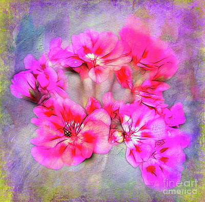 Photograph - Geraniums And Friend by Judi Bagwell