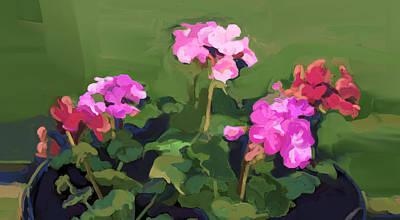 Geraniums In June Art Print
