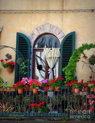 Geraniums On A Tuscan Terrace Art Print