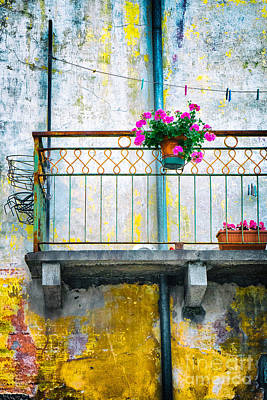 Photograph - Geraniums On Old Balcony    by Silvia Ganora