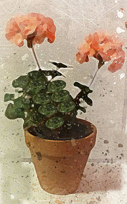 Photograph - Geraniums by Peggy Cooper