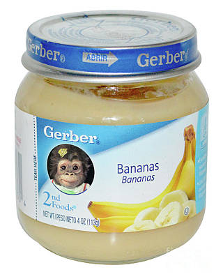 Chimpanzee Mixed Media - Gerber Baby by Brenda Gordon