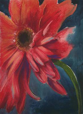 Gerber Daisy 1 Print by Brandi York