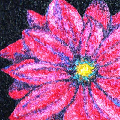 Daisy Drawing - Gerber Daisy by Amanda Schambon