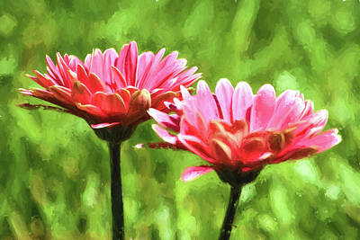Photograph - Gerbera Daisies To Brighten Your Day by Sandi OReilly