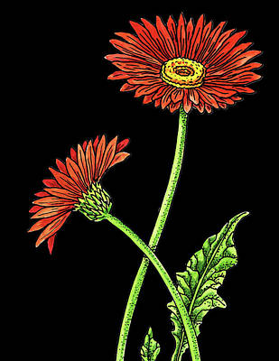Painting - Gerbera Daisy Flowers Watercolour by Irina Sztukowski