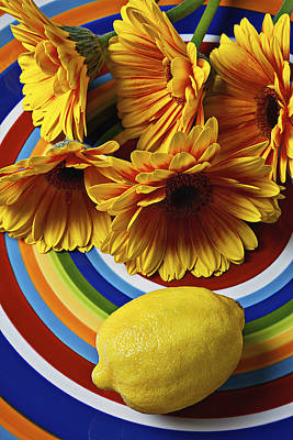 Gerbera Daisy's And Lemon Art Print by Garry Gay