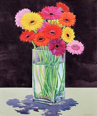 Gerbera Painting - Gerberas by Christopher Ryland