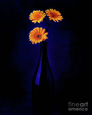 Digital Art - Gerberas In The Blue by Edmund Nagele