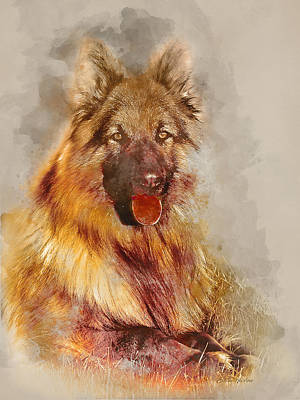 Photograph - German Shepherd 2 by Ericamaxine Price