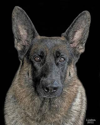 Akc Digital Art - German Shepherd Dog 3 by Larry Linton