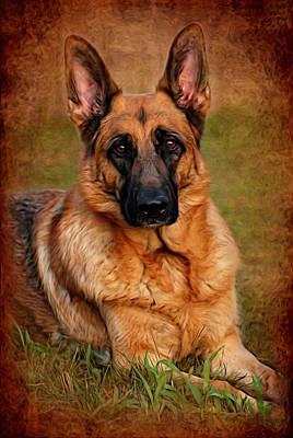 German Shepherd Dog Portrait  Print by Angie Tirado