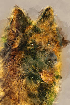 Photograph - German Shepherd by Ericamaxine Price