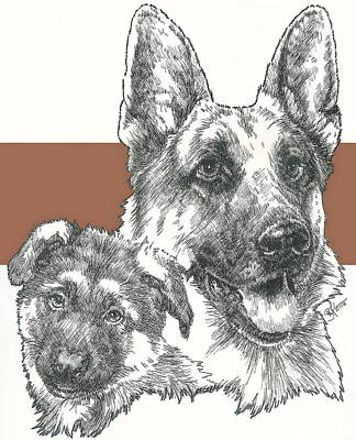 Herding Dog Mixed Media - German Shepherd Father And Son by Barbara Keith