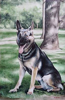 Painting - German Shepherd by Geni Gorani