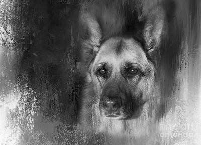 German Shepherd In Black And White Art Print