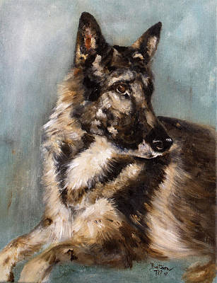 Painting - German Shepherd Portrait  by Barbie Batson