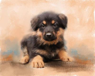 German Shepherd Puppy Portrait Art Print by Jai Johnson