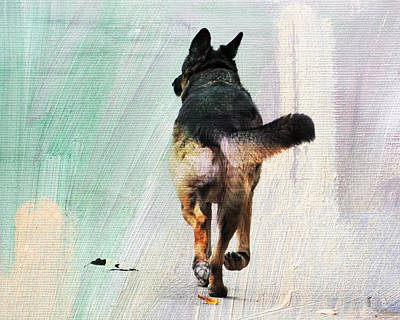 German Shepherd Taking A Walk Art Print