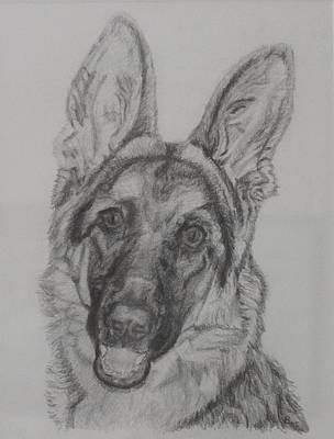 Painting - German Shepherd  by Vera Smith