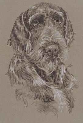 Purebred Dogs Drawing - German Wire-haired Pointer by Barbara Keith