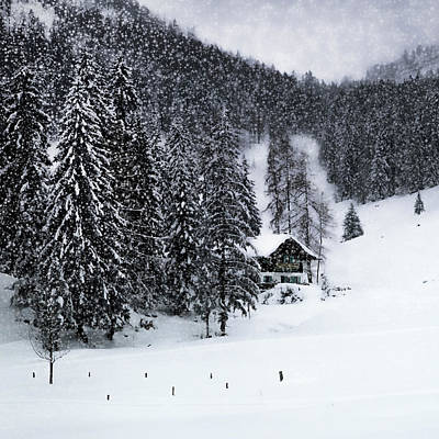 Flurries Photograph - Germany Bavarian Winter's Tale Ix by Melanie Viola